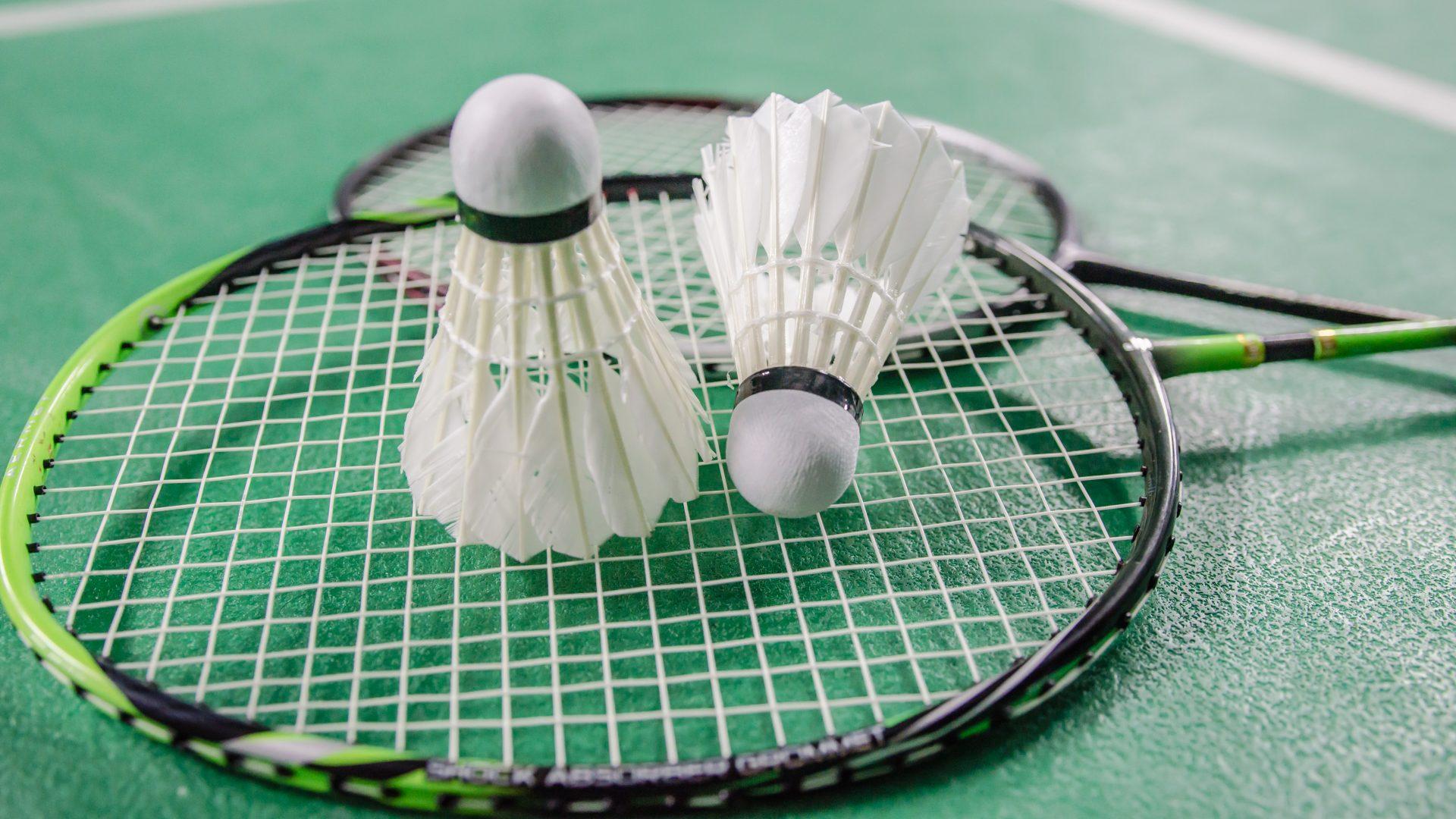 Club athlétique de L'Haÿ-les-Roses badminton